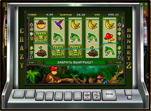 Die Rollen des Spielautomat Crazy Monkey 2